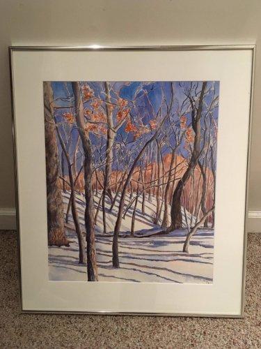 Dianne Chamberlain Mumm Original Painting Ledges State Park Woods, Iowa 19x22