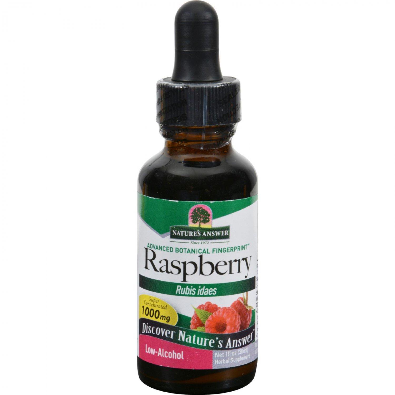 Nature's Answer Raspberry Leaf - 1 fl oz