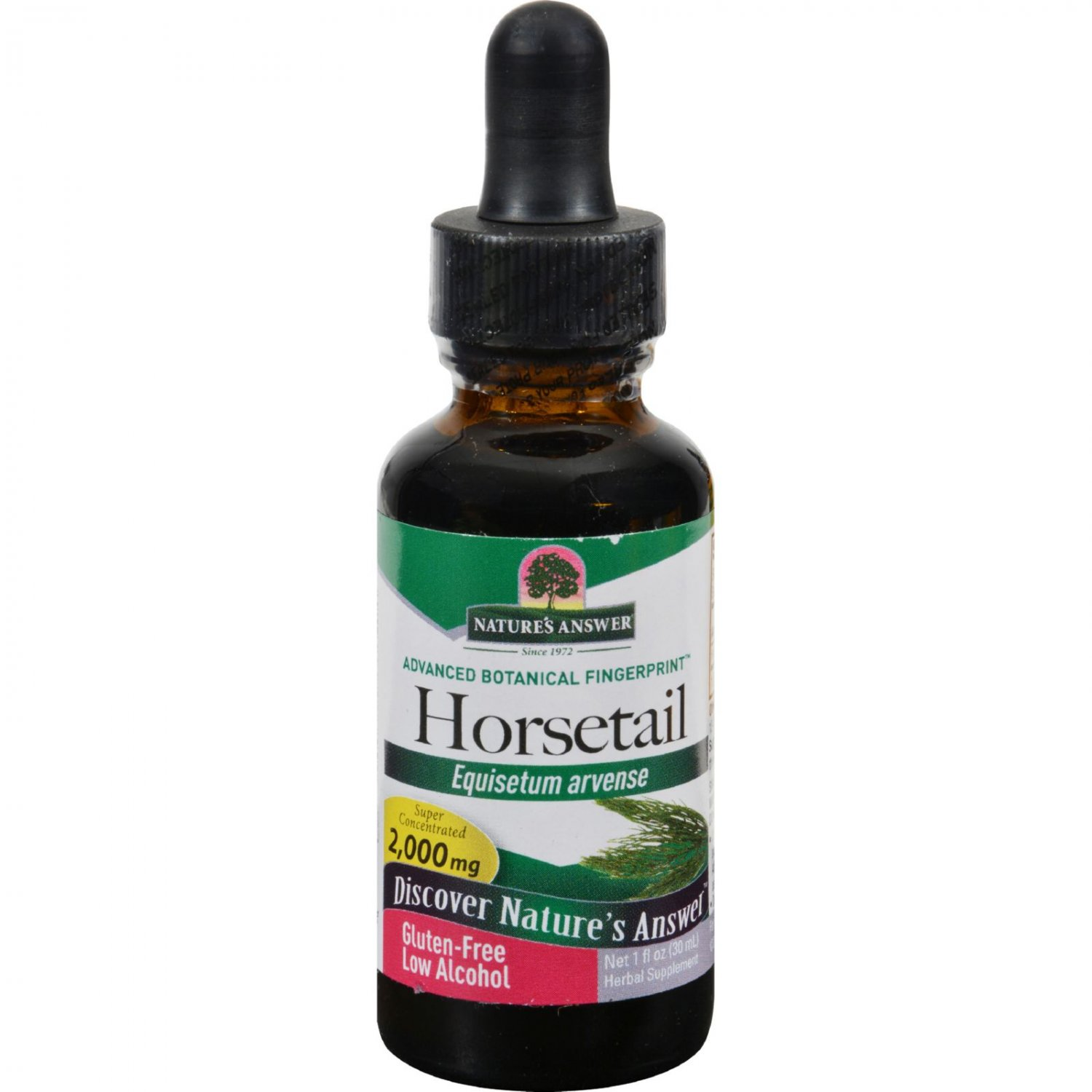 Nature's Answer Horsetail Herb - 1 fl oz