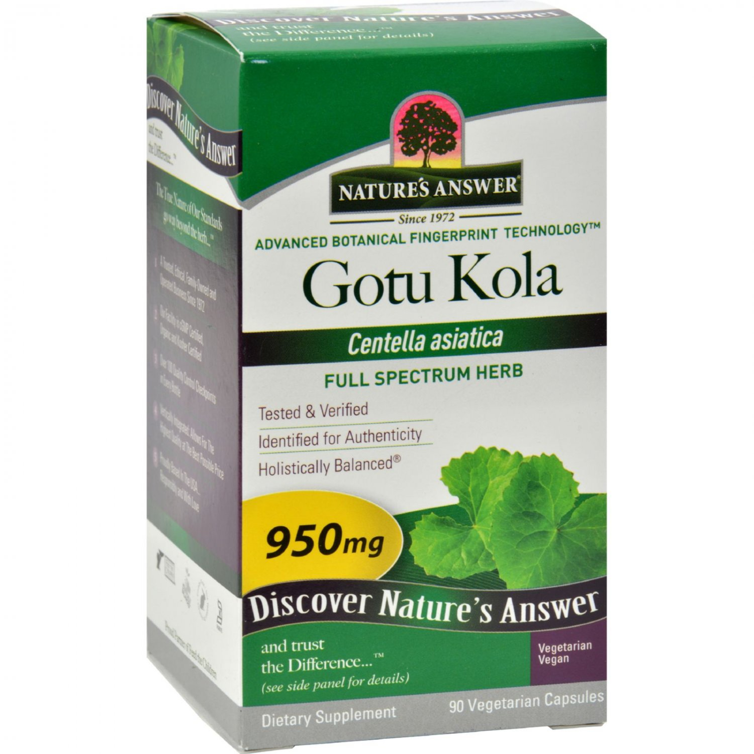 Nature's Answer Gotu-Kola Herb - 950 mg - 90 caps