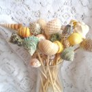 18--6 inch Skewers Seashell Party Toothpicks Picks Shells Beach Themed Wedding