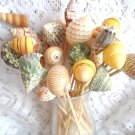 15--6 inch Large Seashell PartySkewers Food Pick Shell Toothpicks Wedding Beach