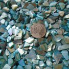 4oz Teal Green Blue Crushed Seashells Crafts Vase Filler Aquarium Shells Fairy
