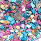 4oz Seashells Vase Filler Abalone Shells Dyed Pieces Crushed Crafts Jewelry Blue