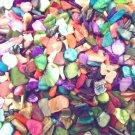 4 oz Seashells Vase Filler Abalone Sea Shells Dyed Pieces Crafts Jewelry Mosaics