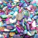 3oz Crushed Seashells Mosaics Vase Filler Sea Shell Beach Mix Gems Craft Jewelry
