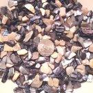 3oz Ivory Black Crushed Seashells Crafts Vase Filler Aquarium Shell Fairy Garden