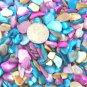 3 oz Seashells Dyed Abalone Mix Shells Pieces Crafts Jewelry Mosaics Vase Filler