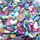 5oz Crushed Seashells Mosaics Vase Filler Sea Shell Beach Mix Gems Craft Jewelry