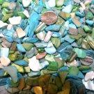 6oz Ivory Blue Green Crushed Seashells Vase Filler Dyed Shells Craft Jewelry