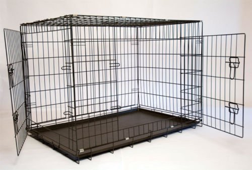 Iconic Pet 24in Foldable Double Door Pet Dog Cat Training Crate with Divider
