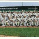 1991 Upper Deck Chicago White Sox No. 617