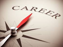 Career or Job Hunting Consultation