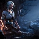 """The Witcher 3 Wild Hunt Game 18""""x28"""" (45cm/70cm) Poster"""