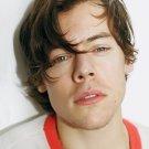 "Harry Styles  13""x19"" (32cm/49cm) Poster"