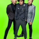 "Green Day  13""x19"" (32cm/49cm) Polyester Fabric Poster"