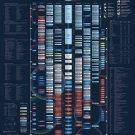 "Integrated Space Plan Chart 18""x28"" (45cm/70cm) Canvas Print"