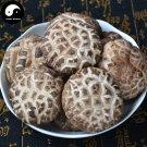 Lentinan Mushroom 500g Chinese Dried Shiitake Mushroom For Immune Hua Gu