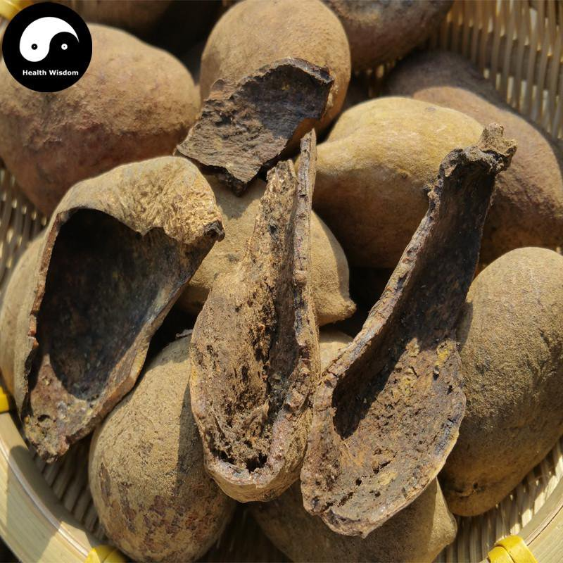 Wu Bei Zi 200g Chinese Sumac Herb Galla Chinensis Nutgalls