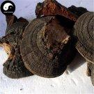 Trametes Robiniophila 100g Chinese Huai Er Mushroom TRM