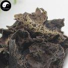 Shi Er 500g Rock Ear Dried Stone Ear Chinese Herb Umbilicaria Esculenta Miyoshi