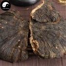 Reishi Mushroom 500g Chinese Wild Lingzhi Ganoderma Lucidum Bao Shu Ling Zhi
