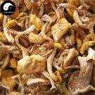 Pleurotus Citrinopileatus 500g Chinese Wild Yellow Mushroom Yu Huang Mo