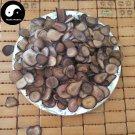 Sika Deer Antler Slice 250g Chinese Energy Tonic Lu Rong Xue Pian