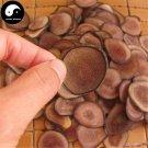 Sika Deer Antler Slice 20g Chinese Energy Tonic Lu Rong Hong Fen Pian