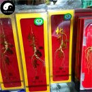 White Ginseng Roots Branches 5 box 6 Years Wild Panax Ginseng Roots Bai Ren Shen