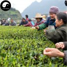 Buy Wuyi Black Tea Tree Seeds 120pcs Plant Wu Yi Black Tea For Lapsang Souchong