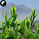 Buy Black Tea Tree Seeds 30pcs Plant Chinese Keemun Tea For Qi Men Hong Cha