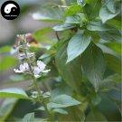 Buy Ocimum Basilcum Seeds 400pcs Plant Chinese Basil Seed Lan Xiang Zi