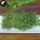 Buy Thymus Vulgaris Seeds 200pcs Plant Vanilla Herb Thymus Mongolicus