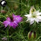 Buy Love-in-a-mist Flower Seeds 320pcs Plant Flower Nigella Damascena Garden