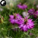 Buy Love-in-a-mist Flower Seeds 160pcs Plant Flower Nigella Damascena Garden