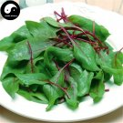 Buy Spinacia Oleracea Vegetable Seeds 150pcs Plant Vegetable Spinacia
