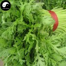 Buy Crown Daisy Vegetables Seeds 400pcs Plant Chinese Green Leaf King Vegetable Tong Hao
