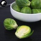 Buy Spore Brassica Oleracea Vegetables Seeds 100pcs Plant Leaf Vegetable Cabbage
