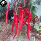Buy Red Long Pepper Seeds 600pcs Plant Hot Chili Vegetables Capsicum