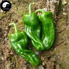 Buy Green Sweet Pepper Seeds 100pcs Plant Bell Pepper Vegetables Hot Pepper