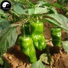 Buy Green Sweet Pepper Seeds 200pcs Plant Bell Pepper Vegetables Hot Pepper