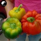 Buy Color Sweet Pepper Seeds 50pcs Plant Bell Pepper Vegetables Hot Pepper