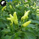 Buy Yellow Hot Chili Seeds 200pcs Plant Pepper Vegetables Yunnan Super Chili