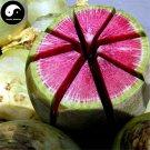 Buy Water Radish Vegetable Seeds 800pcs Plant Red Heart Green Skin Fruit Radish