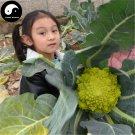 Buy Green Cauliflower Vegetable Seeds 100pcs Plant Rare Broccoli Vegetables