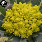 Buy Green Cauliflower Vegetable Seeds 400pcs Plant Rare Broccoli Vegetables
