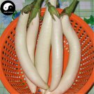 Buy White Long Eggplant Vegetable Seeds 60pcs Plant Eggplant Vegetables Solanum Melongena