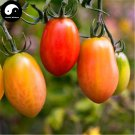 Buy Color Cherry Tomatoes Vegetable Seeds 400pcs Plant Fruit Cherry Tomatoes