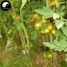Buy Color Cherry Tomatoes Vegetable Seeds 200pcs Plant Fruit Cherry Tomatoes
